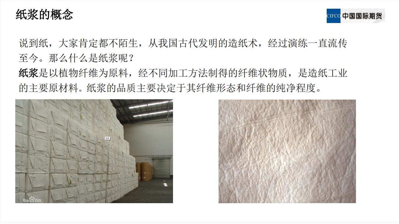 三纸浆懂新品种系列1(1).pdfx_03.png