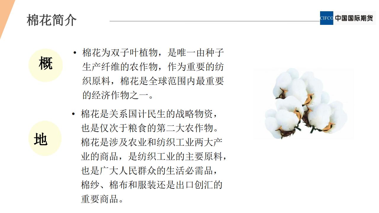 期权新品种系列2 - 棉花期权20190122(1).pdfx_03.png